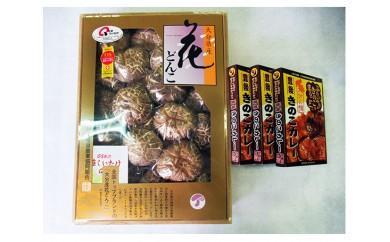 No.471 (E)大分産乾しいたけと豊後きのこカレー / どんこ 椎茸 シイタケ 干し キノコ レトルト 人気