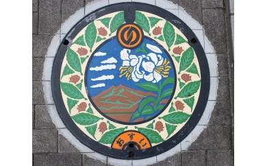 (178) 石岡市デザインマンホール(ユリの花)