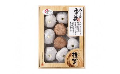No.408 大分県産椎茸 香菇 逸品 IP-A【10pt】
