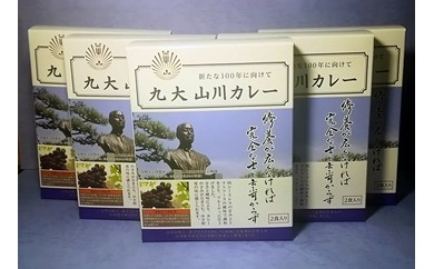 X018 九州大学オリジナル 九大山川カレー【25pt】