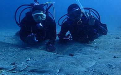 [3040701]【初めてでも安心】体験ダイビング 水中世界を楽しもう!