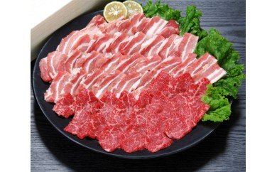 No.479 豊後牛もも、バラ焼肉用・大分県産豚肉バラ焼肉セット【50pt】
