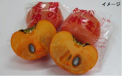 B287 伊藤園 冷蔵富有柿 (4Lサイズ)5kg箱