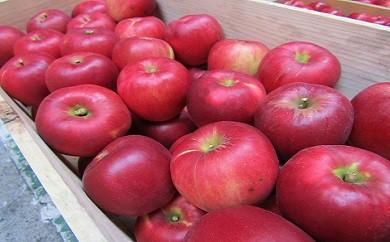 【134】 イーハトーヴりんごセット+農家さんが作ったりんごジュース