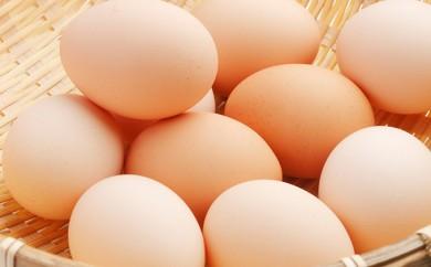 [№5862-0315]大山山麓 坂本養鶏の卵拾い体験 おみやげつき