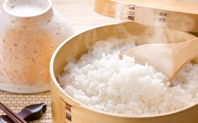 [№5865-0111]清流米 たきたて 5kg