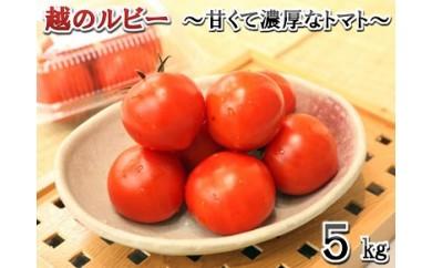 [A-1103] 「越のルビー」 5㎏ ~甘くて濃厚なトマトをお届けします~