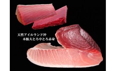 104-007 まぐろの魚二厳選 天然特上本鮪大とろ中とろ赤身セット③