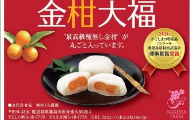 A-082 【県特産品協会理事長賞受賞】金柑大福詰め合わせ