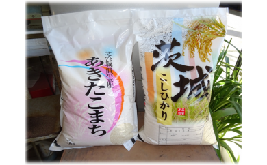 No.186 本澤米穀店のお米タベ・クラーベ