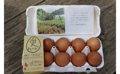 健康卵「愛(まな)たまご」と燻製卵のセット