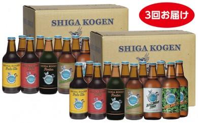 [№5658-0121]玉村本店 志賀高原ビール堪能セット(24本×3回お届け)