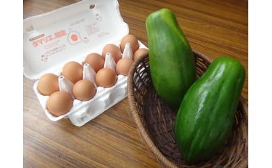 農薬・化学肥料不使用「青パパイヤ」と健康卵「愛(まな)たまご」セット