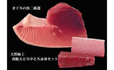334-034 まぐろの魚二厳選 天然極上南鮪大とろ中とろ赤身セット①(2回お届)