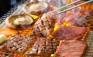 B31 宮崎牛・九州産豚肉焼肉セット