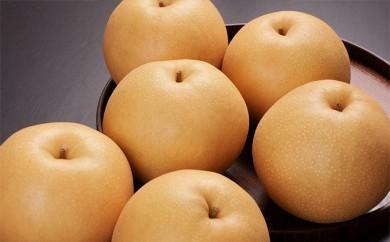 [№5672-0130]白岡の梨「白岡美人」 あきづき梨 5kg