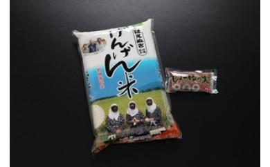 NA197 平成29年産米 平田げんげん米(はえぬき)5kg