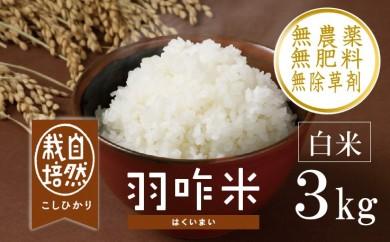 [A016] 【無農薬】【白米】能登のこだわり自然栽培こしひかり『羽咋米』 3kg(3kg×1袋)