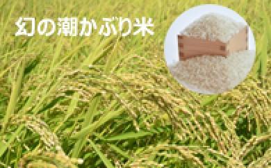 幻の潮かぶり米セット