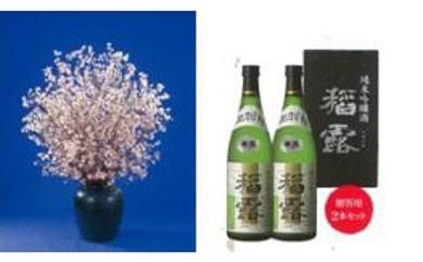 A020 啓翁桜と純米吟醸酒のお花見セット