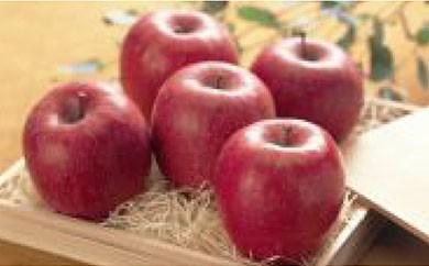 A013 ふじりんご
