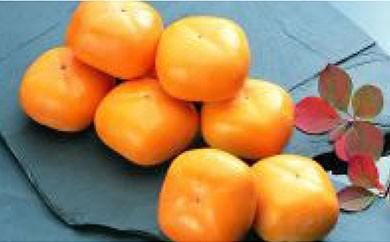 A012 庄内柿(柿しぐれ)
