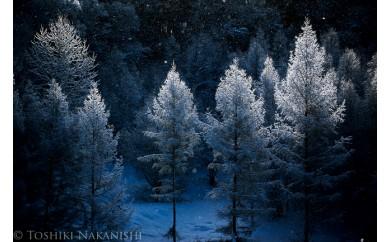 [100-23]写真家 中西敏貴 額付き写真「厳冬の美」(サイン入り)