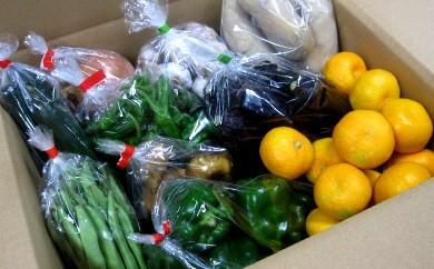 B-51 香我美町西川地区の直販所 あぐりのさと 野菜と果実便り