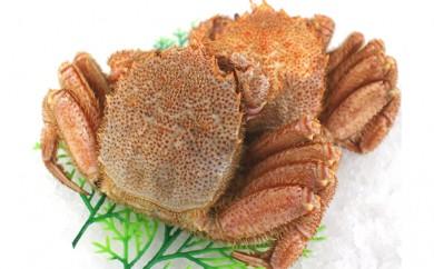 [№5742-0247]常呂沖産ボイル毛蟹(冷凍) 600g×2