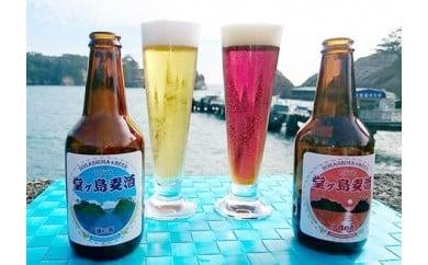 [3028603]瓶詰め直後の地ビール「堂ヶ島麦酒」12本セット