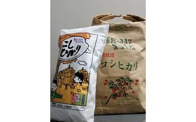 C-8 特別栽培米コシヒカリ 精米または玄米のままで30㎏