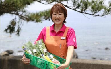 RK-04むろとの味・新鮮野菜セット(12品)