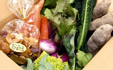 B-18 生産者の想いをのせて旬のモノをお届けします! ペットのおやつ+香南市のお野菜詰合せ