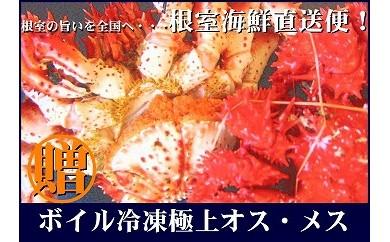 CB-70005 【北海道根室産】ボイル花咲ガニオスメス2尾(1.5kg前後)[348511]