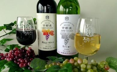 [№5716-0097]天橋立ワインフルボトルセット 赤・白