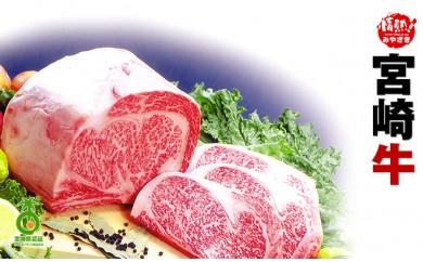 29-0172 【芳醇!】宮崎牛焼肉食べ比べセット+α(小林市産)【24000pt】