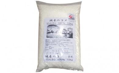 [№5815-0050]坂本のコメ コシヒカリ 10kg