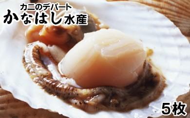 [Ka303-A026]ホタテ5枚(貝付生冷凍)