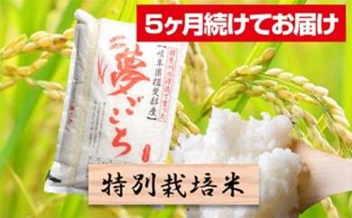 [№5644-0321]特別栽培米★[頒布会] 5カ月★毎月 精米10kg または玄米11kg 【夢ごこち】