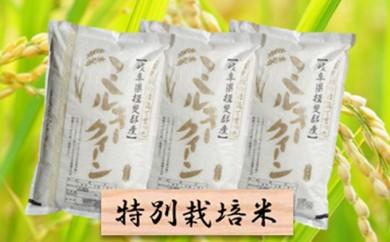 [№5644-0309]特別栽培米★精米30kg(分搗き可)または玄米33kg 【ミルキークイーン】