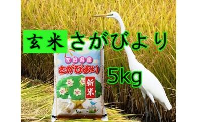 A-057 【玄米】8年連続食味「特A」さがびより 5kg【健康配慮】