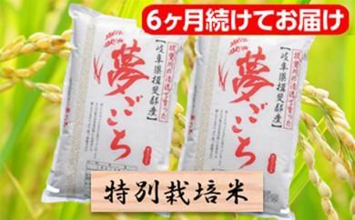 [№5644-0333]特別栽培米★[頒布会] 6カ月★毎月 精米20kg または玄米22kg 【夢ごこち】