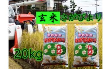 C-029【玄米】8年連続食味「特A」さがびより20kg【健康配慮】