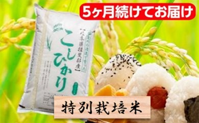 [№5644-0320]特別栽培米★[頒布会] 5カ月★毎月 精米10kg または玄米11kg 【コシヒカリ】