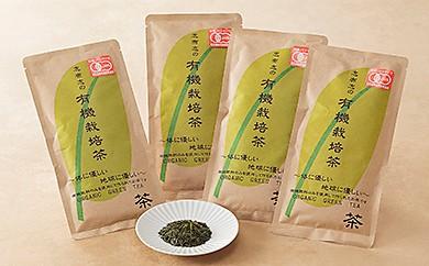 A-186 鬼塚製茶 志布志の有機栽培茶