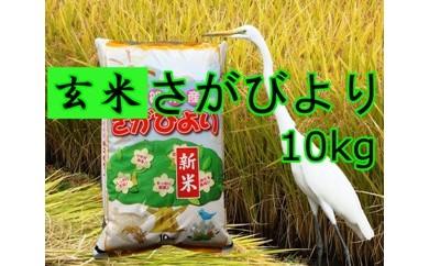 A5-031 【玄米】8年連続食味「特A」さがびより10kg【健康配慮】