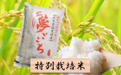 [№5644-0297]特別栽培米★精米10kg(分搗き可)または玄米11kg 【夢ごこち】