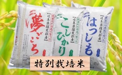 [№5644-0316]特別栽培米★精米30kg(分搗き可)または玄米33kg 【ハツシモ・コシヒカリ・夢ごこち】