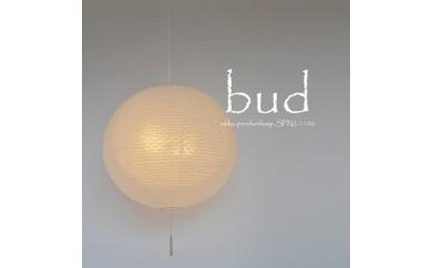 D27-01 bud SPN2-1100 小梅白in小梅白