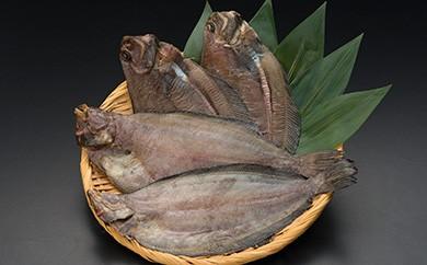 [Ka401-A013]北海道釧路産 一夜干し柳かれい4枚